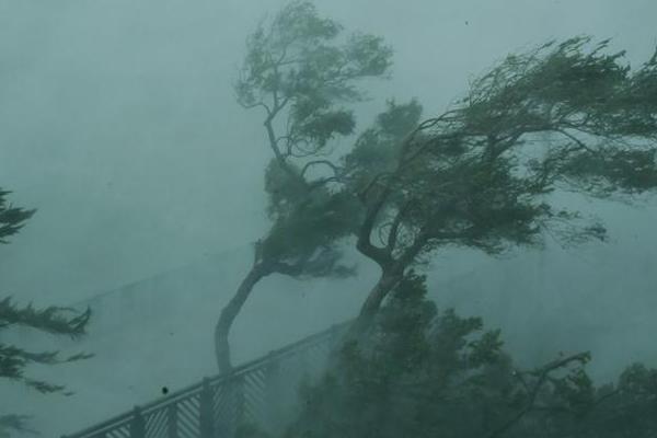 आंधी, बारिश ने बरपाया कहर, 17 की मौत