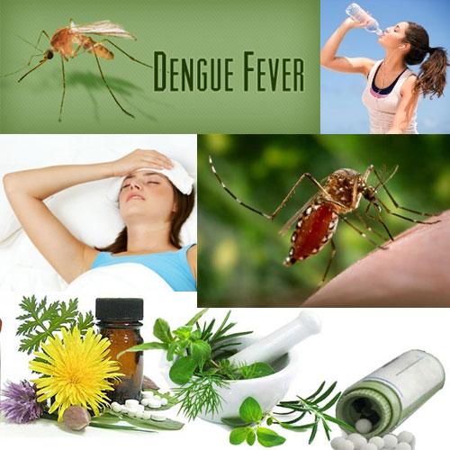 10 घरेलू टिप्स: डेंगू बुखार से बचने के