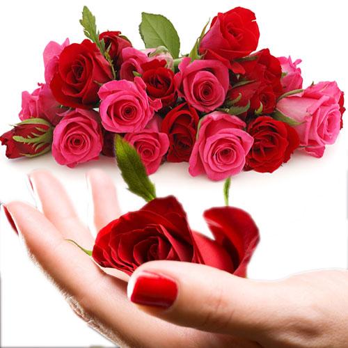 गुलाब के 11अनजाने लाभ त्वचा व स्वास्थ्य के लिए