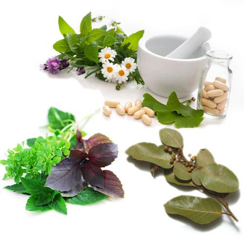 6 ग्रीन खुशबूदार Herbs बीमारियों को भगाए