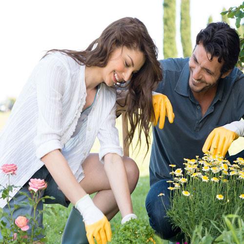 6 टिप्स:खूबसूरत गार्डन के लिए