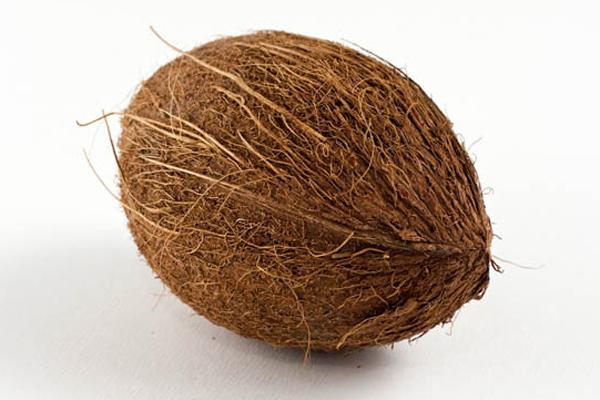 खुद को शनि की छाया से दूर  करने के लिए करें नारियल का ये उपाय