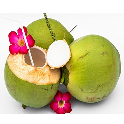 नारियल पानी के लाभ