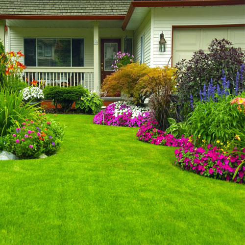 रंगबिरंगे फूलों से घर में सुख शांति रहे बरकरार