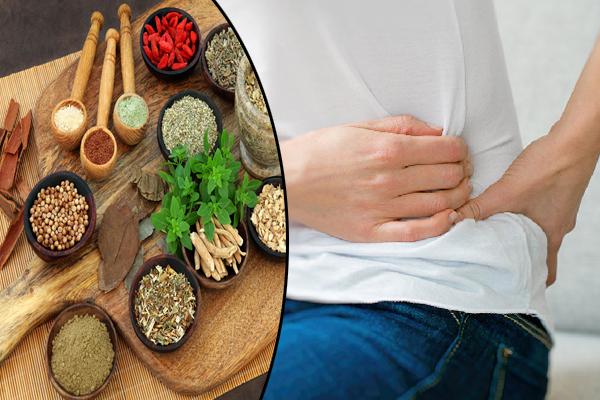 आयुर्वेद में किडनी की बीमारी का असरदार इलाज