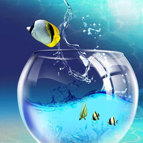 Fish Aquarium से दूर होते है वास्तु दोष