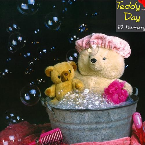 रोज और चॉकलेट हुआ बहुत, टेडी से करें प्यार का इजहार