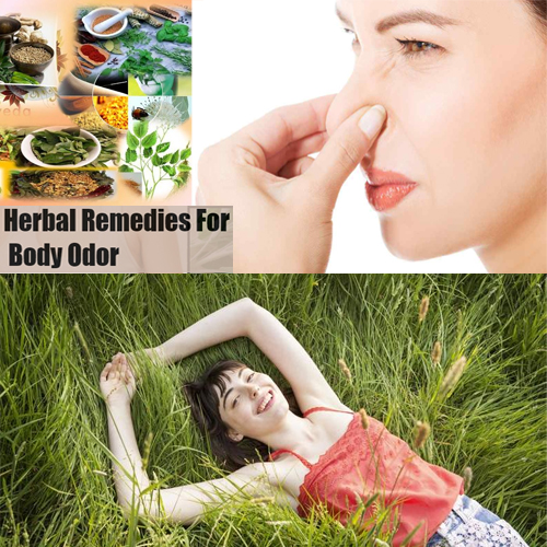 Herbal इलाज:पसीने की दुर्गन्ध से पाएं छुटकारा