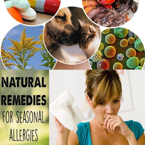 Home टिप्स:Allergies से छुटकारा पाने के लिए...
