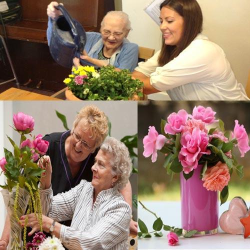 घर पर फूलों की कैसे करें देखभाल