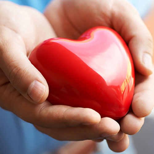 कोलेस्ट्रॉल नियंत्रण रखे दिल का खास ध्यान
