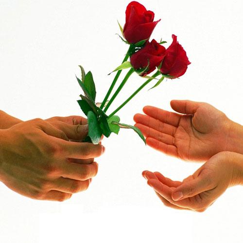 प्यार का इजहार लाल गुलाब के साथ...