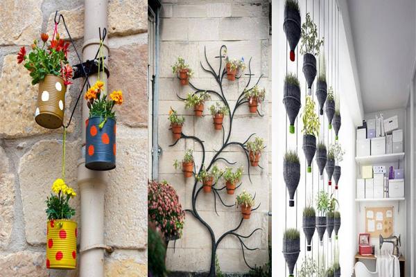 अपने घर में ऐसे करें indoor gardening.....