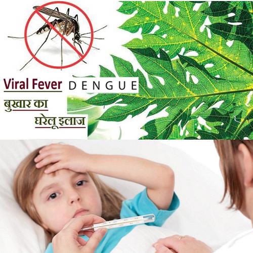 कुदरती उपाय: वायरल, डेंगू, मलेरिया से पाएं छुटकारा
