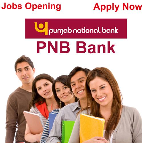 Bank में नौकरी पाने का बेहतर मौका, करें आवेदन