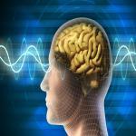 सामाजिक रहने से डिमेंशिया का खतरा होता है कम