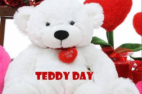 टेडी डे स्पेशल: अगर लड़का आपको दें इस तरह के टेडी..तो ये हैं खास बात..