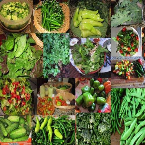 बारिश में हरि सब्जियों को कहे ना.. क्योंकि